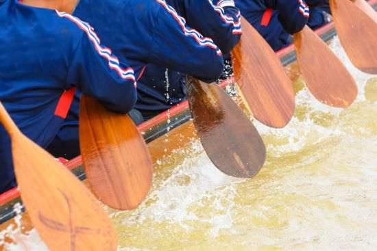closeup of a rowing team with paddles in the water, representing your company values