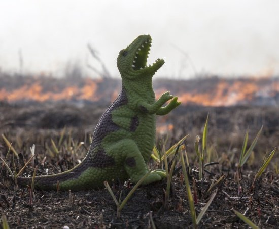 Plastic dinosaur on a barren field, representing how company meetings are like grow monsters
